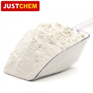 Carboxymethylcellulose Sodium (CMC)